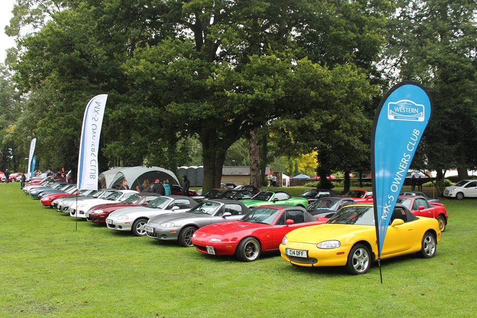 Pershore Plum, Gloucester Motor Show and Weston Super Mare
