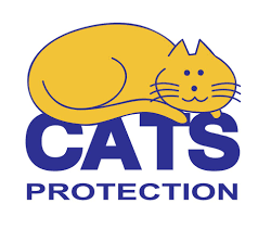 East Sussex - Cats Protection Summer Fun Day & Car Show - 5th July 2020 @ Cats Protection Summer Fun & Car Show